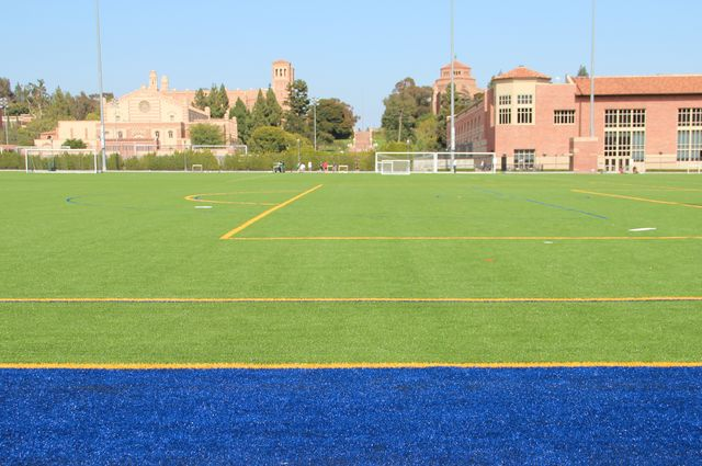 The new artificial turf installed on the UCLA intramural field, which reopened in June 2015.