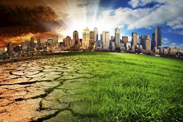 The UCLA Center for World Health and the LA5 Rotary Club brought together a panel of experts to talk about the failing health of the Earth and what mega-cities can do about it.