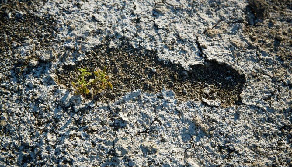 A footprint in the dry, mineral-crusted, banks of the depleted San Luis Reservoir in California, June 12, 2015.